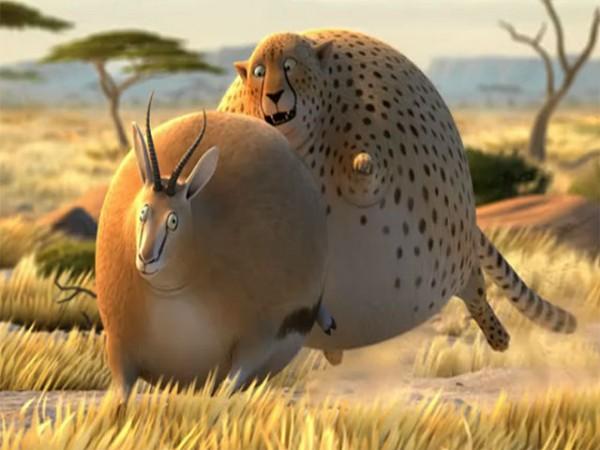 Rollin' Safari