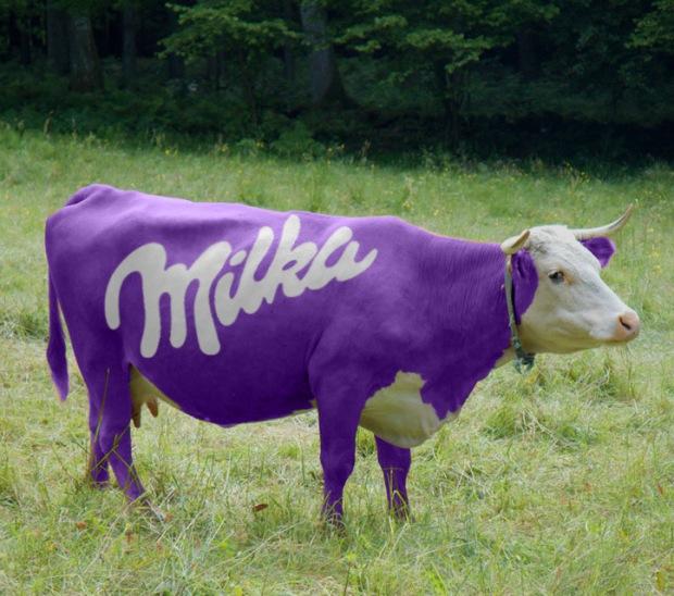 milka-cow-